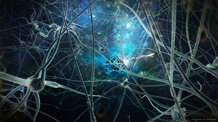 texture-neuron-spark-digital-art-and-gns-neusenz_2511284