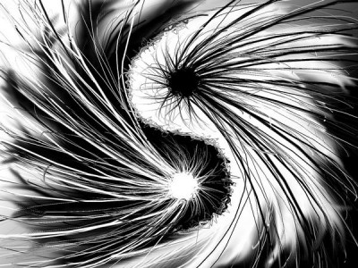yin_yang_of_chaos_and_disorder_by_misellee-d3jop07