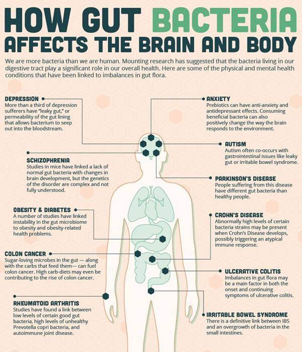 Source: http://yourhealthblog.net/infographic-how-gut-bacteria-affects-the-brain-and-body/