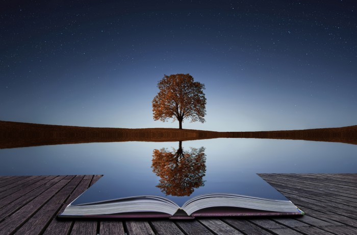a-tree-reflection-in-water-book